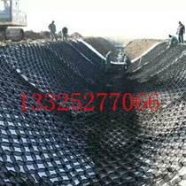 HDPE土工格室巢室巢格