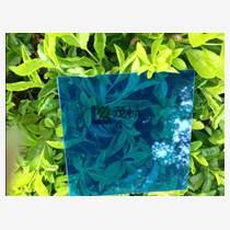 蘇州茂祿湖藍色pc磨砂板供應不二之選