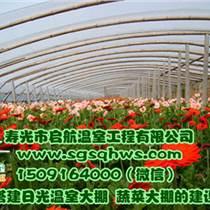 溫室大棚  立柱花卉溫室大棚