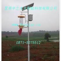 頻振式太陽能殺蟲燈強效誘殺技術還原綠色生態