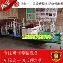厂家促销 优质保育床 仔猪保育床 小猪用保育床 养猪设备母猪产床复合保育床 母猪产床 猪场自动料线