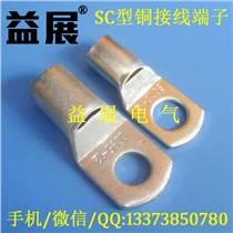 優質銅管線鼻子,SC35-10mm鍍錫銅鼻子,益展廠家直銷