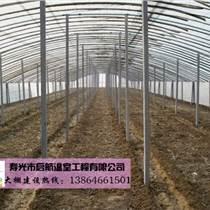 寿光市启航温室   大棚建设   有立柱蔬菜大棚