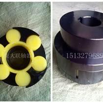 沧州集大梅花形弹性联轴器供应联轴器厂家直销