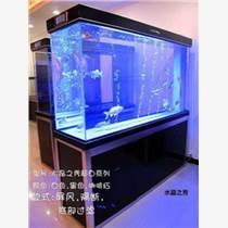 觀賞魚加盟