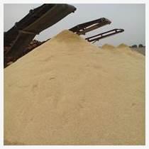 青島海沙廠家 天然海沙哪里有賣 幼兒園專用白沙