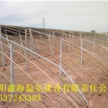 怎樣建造西瓜大棚土坑棚溫室建一平方米大棚造價