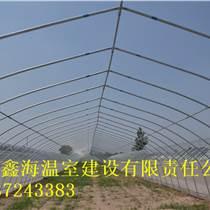 優質塑料大棚建造標準杜集區草莓大棚建造示范園