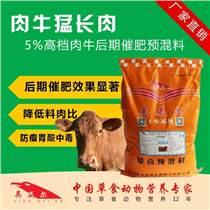 肉牛催肥专用预混料  牛快速上膘饲料