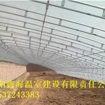 建一平方日光溫室草莓大棚多少錢