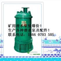 隔爆排污泵,排污泵,隔爆排污泵報價