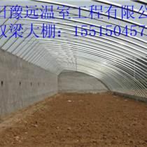 洛陽優質花卉溫室大棚建造成本保定無支柱大棚建造報價