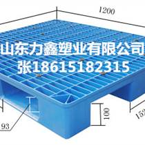 厂家直销各尺寸塑料托盘 质量保证专业生产