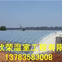 唐山幾字鋼溫室建造方案草莓大棚搭建技術