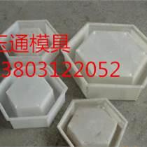 巴中市玉通模具塑料護坡模具供應優質服務