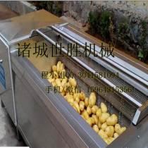 鹤壁世胜萝卜清洗机供应安全可靠