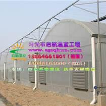智能溫室   塑料薄膜智能溫室   壽光市啟航溫室