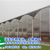 圓拱型連棟溫室-壽光市萬禾農業