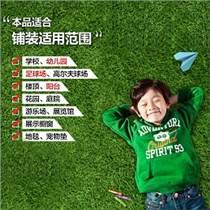 陕西宝鸡市幼儿园人造草坪,足球场人造草坪