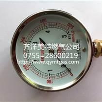 镇江香港中邦电热式汽化器供应厂家直销