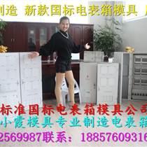 耐用智能電表箱注塑模具,18表塑料電表箱模具,注塑電表箱模具生產