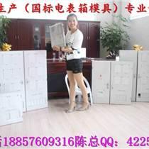 黃巖北城專做20表電表箱模具,智能電表箱塑膠模具,ABS塑料電表箱模具廠家
