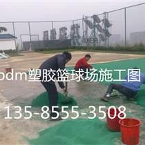 蕪湖塑膠跑道廠家供應/歡迎咨詢
