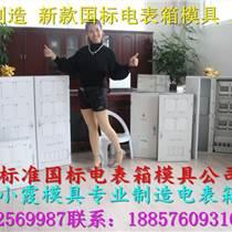 浙江塑料模公司 三相6表電表箱模具,PC注射2表電表箱模具/ABS注射2表電表箱模具生產