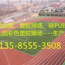 余杭塑膠跑道廠家供應/歡迎咨詢
