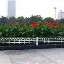 绿叶花卉租赁、驻马店市花卉租赁、绿艺轩(图)