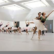 舞蹈教室芭蕾舞爵士舞專用地膠 舞蹈室舞蹈房專用地膠