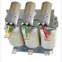 德州吉隆电气自动化有限公司LKSG调谐电抗器