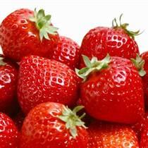 山东草莓苗基地热销 甜宝 红颜 章姬 甜查理 酸甜可口 保湿邮寄