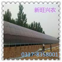 沧州新旺兴农养殖大棚供应放心选购
