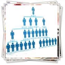 供应一条线直销软件,一条线直销软件奖金制度,一条线会员结算软件