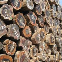 出售進口非洲原木鐵木豆原木