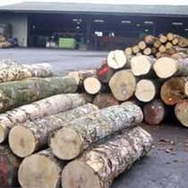 出售進口奧古曼原木
