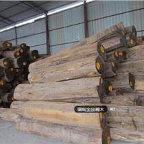 出售進口緬甸金絲楠木原木