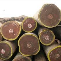 出售進口緬甸柚木原木