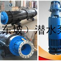 天津  東坡耐高溫潛水泵-溫泉潛水泵-熱水潛水泵