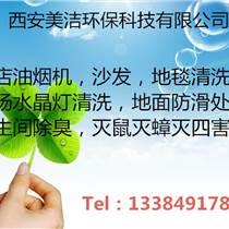 西安清洗地毯 公司供应专业快速清洗地毯