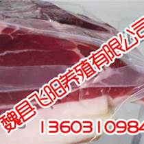 邯鄲野豬肉,邯鄲野豬肉只買飛陽家,飛陽野豬養殖