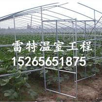 定制蔬菜大棚骨架 蔬菜種植大棚 物美價廉壽命長