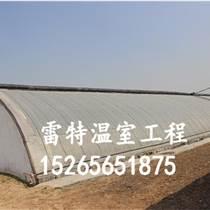 雷特溫室工程專業生產大棚蔬菜建設 質量保證 歡迎咨詢