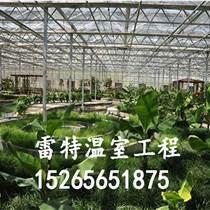 雷特牌溫室大棚工程建設 溫控蔬菜大棚 全國聯保
