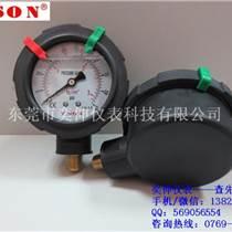 PP隔膜压力表,东莞奕伸仪表厂货直供,PP隔膜压力表质量