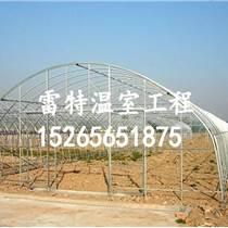 供應大棚骨架價格 鋼結構大棚廠家 全國聯保