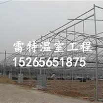 承接蔬菜大棚安裝 蔬菜大棚建設 使用壽命長