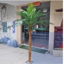 北京仿真椰子樹棕櫚樹出租批發