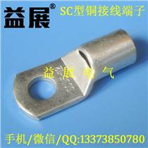 SC95-12窺口銅端頭,鍍錫管壓銅鼻子,線鼻子規格